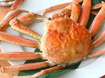 【福井若狭の味な旅】蟹+ふぐ+サバへしこetc♪古今東西福井名物まるごと満喫グルメプラン