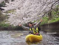 桜の下でハイポーズ♪