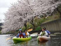 【春カヤック】お花見カヤック3時間コース付き♪☆今年も感謝Priceで始動します!