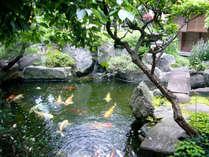 お部屋から望む日本庭園。四季折々の景観を愛でながら、心穏やかな時間をお過ごし下さい。