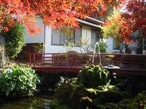 季節の移ろい、安らぎの空間を演出する中庭