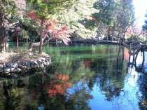 名水百選『出流原弁天池』。お散歩に最適。「弁財天」やマイナスイオン「風穴洞」があるパワースポット☆