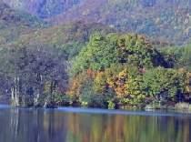 紅葉・曽原湖