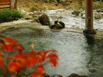 『混浴露天風呂』「せせらぎの湯」(秋の景観)※女性専用時間あり
