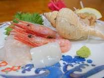 丹後の新鮮な海の幸をお造りで!季節によって地魚の種類は変わりますのでお楽しみに♪