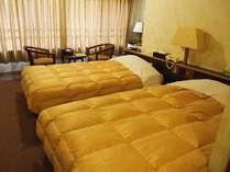 17平米・広めのお部屋にゆったりサイズのベッドふたつ