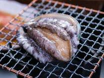 伊豆の海であがった獲れたての鮑を踊り焼きで