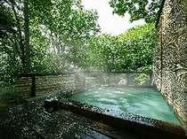 木々の中から木漏れ日が差し込む庭園露天風呂