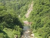 【眺望】渓谷の豊かな自然を満喫。(12階客室から)