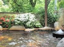 石臼から天然炭酸泉が湧き流れる源泉掛け流し、お泊まり専用の貸切露天風呂。自然のどかな原風景にほっ~