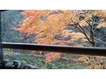 秋色に癒やされる客室露天風呂の秋色休日 炭酸泉風呂でほっかほか
