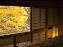 静寂にのんびりと紅葉をお部屋で愛出る秋のひととき