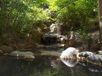 【露天温泉岩風呂】こんこんと湧き出るナトリウム塩化物温泉