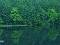 奥蓼科 御射鹿池 TVCM撮影のロケ地でもあり、東山魁夷画伯が「緑響く」を描いた地として知られている
