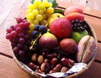 【Towa・旅】~おいし~なTowa・旅~(夕朝食+森の中の果樹園入園券付き)