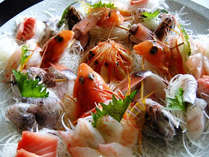 【50歳以上の方限定】特典付♪新鮮地魚使用!刺身盛りプラン