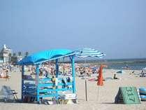 【じゃらん限定】7~8月◇目の前が海!夏本番の南知多で海水浴と温泉、海の幸満喫プラン[量控えめ]