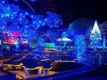 夜はちょっと足を伸ばして湯河原のクリスマスイルミネーションでも♪【冬ほたるin万葉(湯河原)】