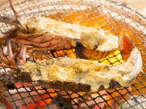 【 一品料理 】 伊勢海老の鬼殻焼き!お刺身でも美味い伊勢海老をあえて焼いて召し上がれ♪
