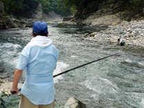 渓流釣り天然岩魚をゲット!夜は釣果で酒盛りだ♪