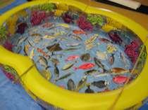 「ちびっ子わんぱくランド」伊豆に泳いでいる魚を釣り上げよう!
