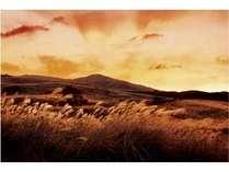 【一泊二食付飲み放題プラン】まだ見ぬ絶景へ~稲取細野高原「すすきイベント」へ行く~