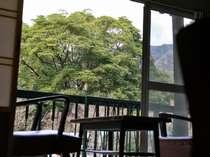 山間の風景が癒します。2階の客室からの眺め