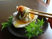 濃厚でクリーミーな味わいは、まるで日本海を独り占めしたような磯の香りに包まれること間違いなし