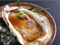 「海のミルク」と称されるクリーミーで濃厚な丹後特大岩牡蠣を堪能し尽くす<夏芭蕉>