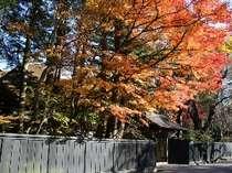 秋の武家屋敷