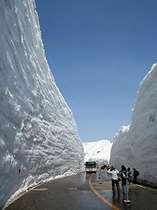 立山・雪の大谷ウォーク開催! 2020年 全線営業期間:4月15日(水)~11月30日(月)