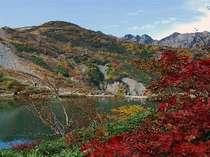 八方池に映る秋景色♪10月上旬から中旬にかけて山頂に初冠雪が訪れると、三段紅葉が楽しめます。
