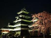 国宝松本城は、約300本の桜が植えられ、夜にはライトアップされ、夜桜見物も!