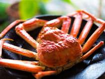 ◆夕食◆兵庫が誇る極上ブランド松葉ガニ♪浜坂漁港直送!冬の王様を食べつくす♪
