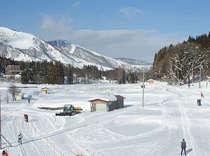 客室からの眺め。ノルディックコースがあり裏山でスノーシュー散策も楽しめます