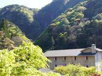 赤目温泉隠れの湯 対泉閣 (三重県)