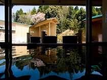 柔らかな天然温泉「珠光の湯」「新珠光の湯」2本の源泉を湛える大浴場はお肌に良い美人の湯