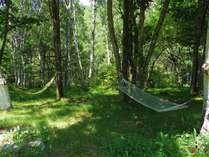 涼しい木立の中でハンモックはいかがですか。
