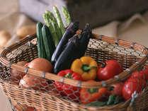 おかげさまで50周年【6/1~7/17基本】いわて季節の恵みバイキング夏野菜フェア