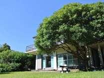 伊豆高原にひっそり建つ小さなプライベートハウス♪1人でもカップルでも家族でも、使い方はあなた次第!