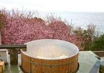 大海原を見渡す絶景の野天風呂。お花見露天は春先だけのとっておき!(例年2月下旬~3月上旬頃)