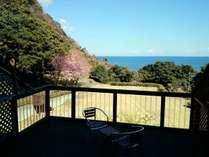 本館客室には海を一望するウッドテラスを完備。例年2月下旬~3月上旬には桜の姿も。