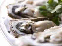 【牡蠣づくし】サロマ湖・仙鳳趾産など旬の牡蠣を堪能!/牡蠣創作ディナー