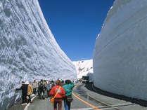 ホテル前から「雪の大谷」へノンストップ!!楽々「室堂直行バス」往復セットプラン
