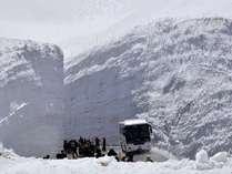 高さ20mに迫る大絶景「雪の大谷」の観光に便利なロケーション