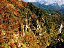 御在所岳中腹辺りの紅葉イメージ