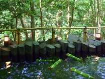 菖蒲湯祭り6月4日・5日は、無病息災を祈願して当館のお風呂にも菖蒲が入ります♪