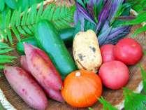 ★「ダイニング蒼翠」お食事の一例。地元野菜をふんだんに使った体に優しいお料理の数々をご賞味下さい♪