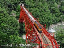 ■渓谷☆散策■ 大人気の『黒部トロッコ列車』チケットを手配 ~新緑・紅葉と四季を間近で感じる森林浴~