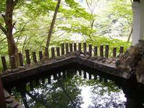 *目にも眩しい新緑の露天風呂。